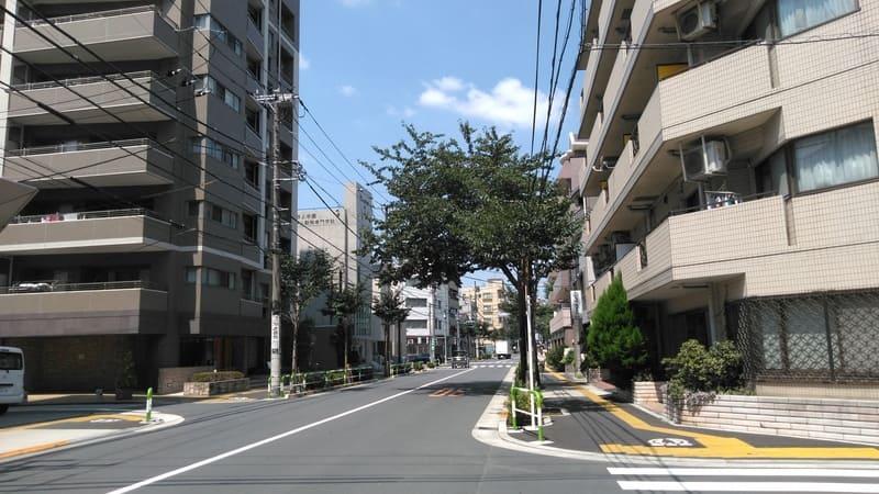 滝乃川桜通り