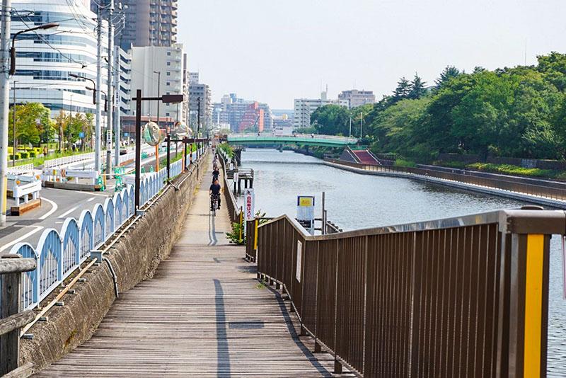 横十間川の遊歩道