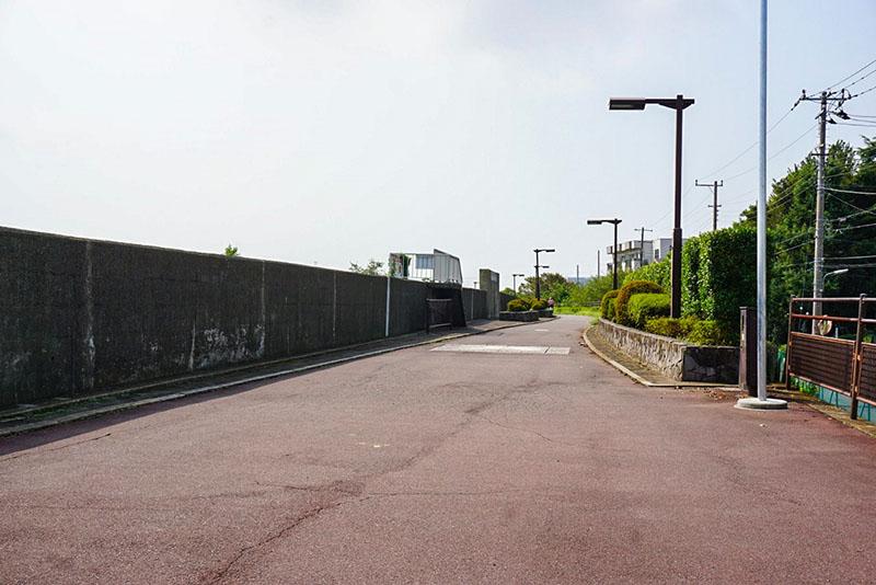 旧江戸川の遊歩道