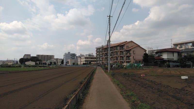 みずほ台西側の農道