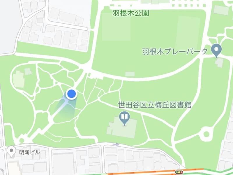 羽根木公園現在地5