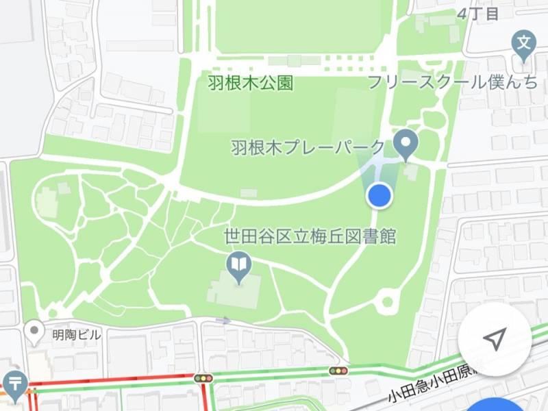 羽根木公園現在地2