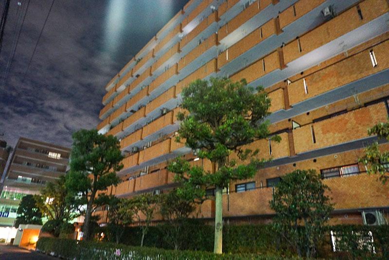 区役所裏の団地の夜の風景