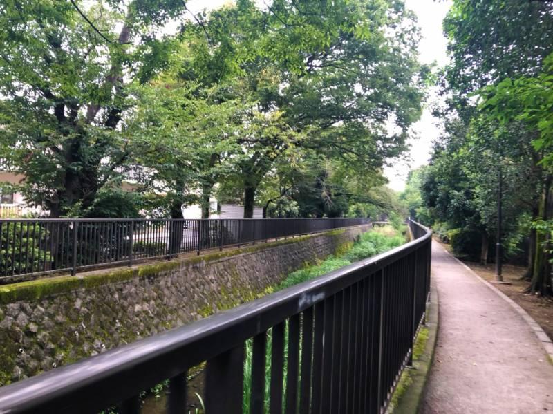 白子川沿いの散歩道