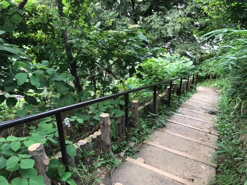 小豆沢公園の遊歩道