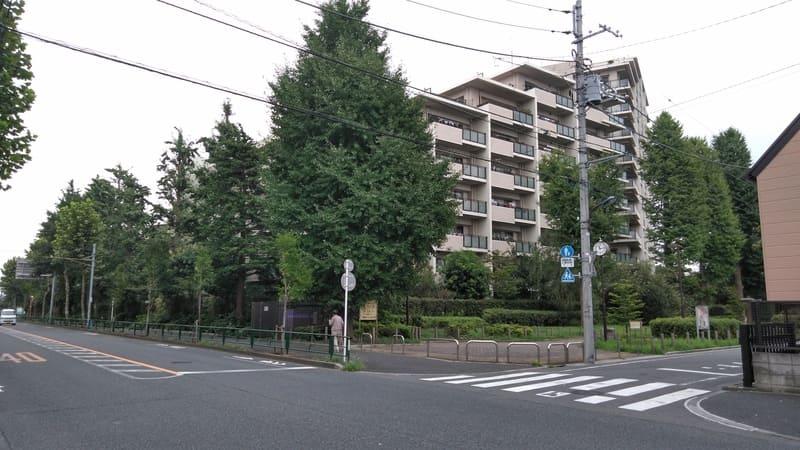 南田中いちょう並木公園