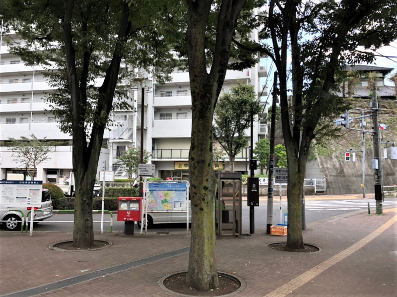 上中里駅前の街路樹