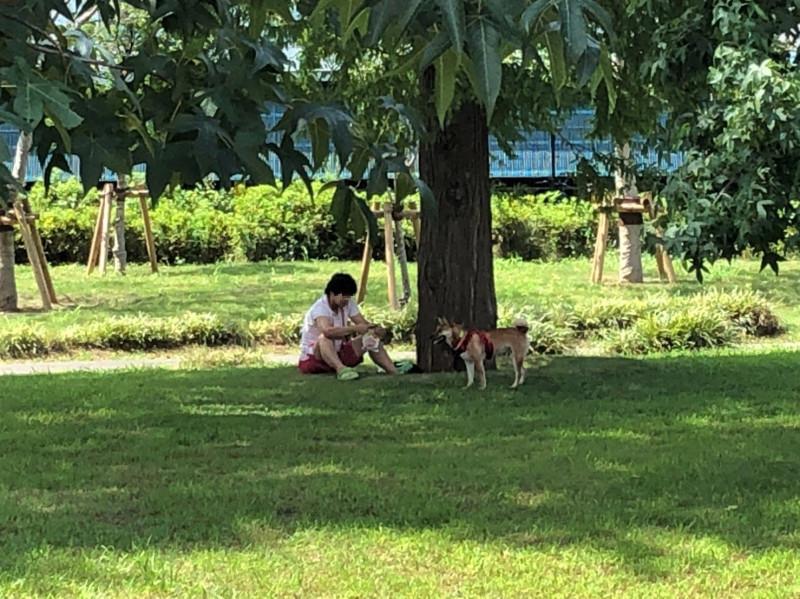 鈴谷西公園で犬を散歩させる男性