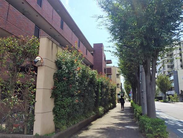 北大通り沿いのマンション