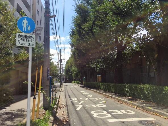 小金井市立第三小学校横の道路