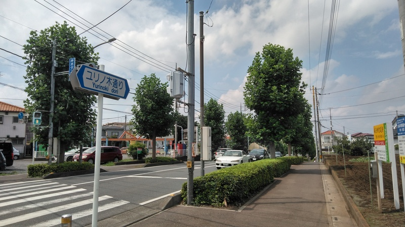 柳瀬川東側 ユリノ木通り