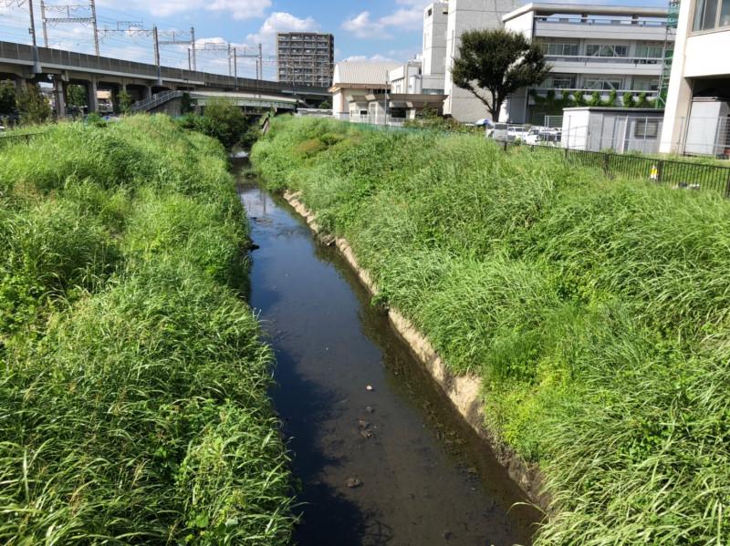 与野本町駅周辺の鴻沼排水路