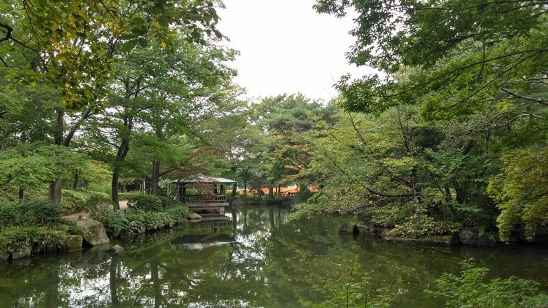 井草森公園内の池