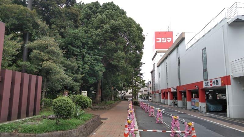 井草森公園横のコジマ
