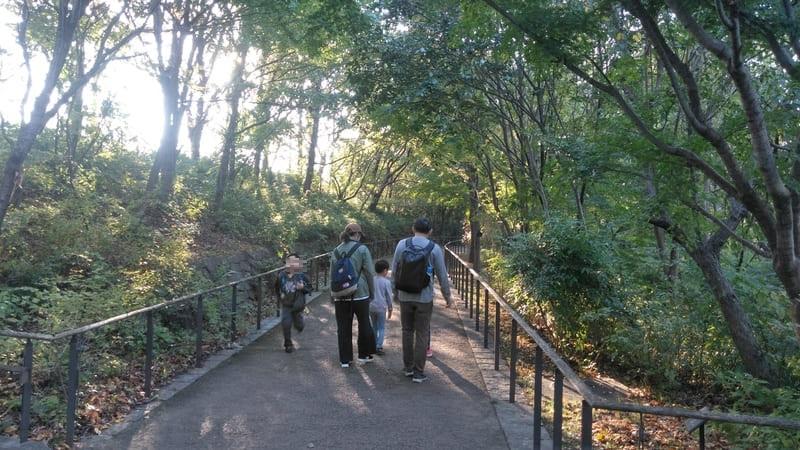 赤羽自然観察公園 歩道