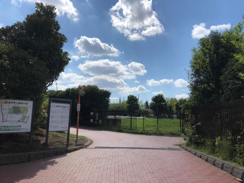 新河岸東公園こどもスポーツ広場周辺のウォーキングコース