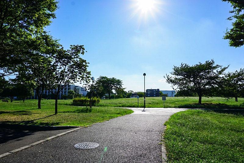 中川公園の広場