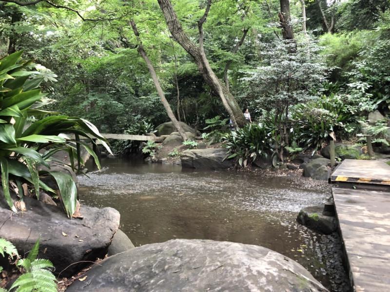 北区立名主の滝公園
