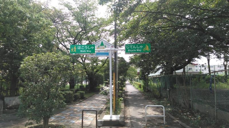 柳瀬川 歩道と自転車道
