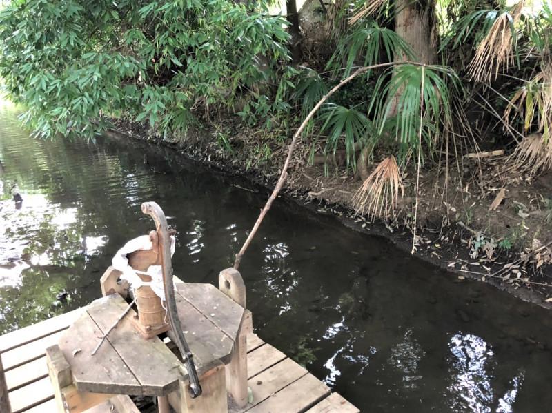 河童の森の釣竿