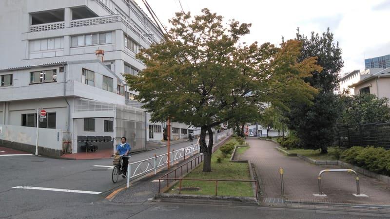 日本駐車ビル前 通り