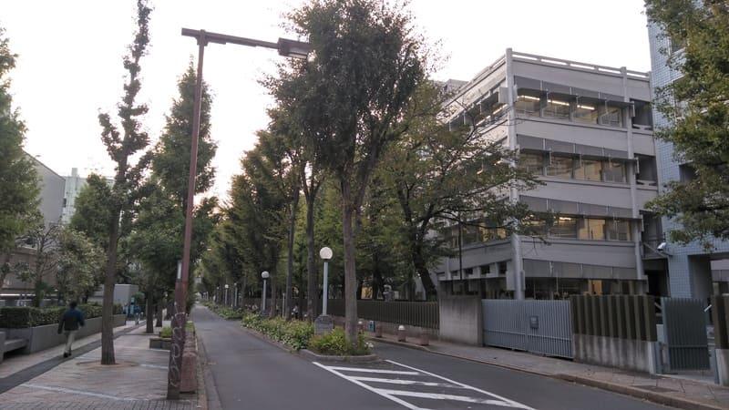 新宿コズミック通り