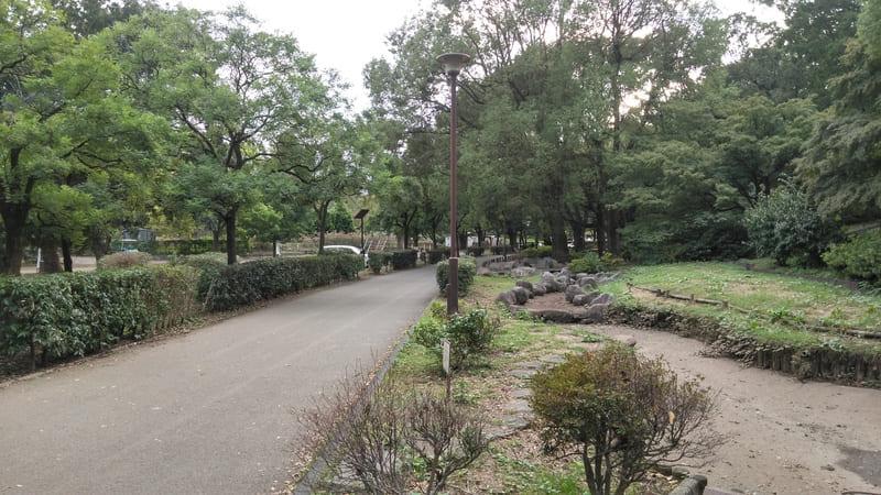 戸山公園 通路