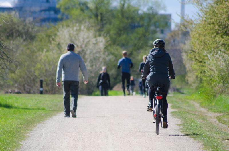 公園を走る自転車