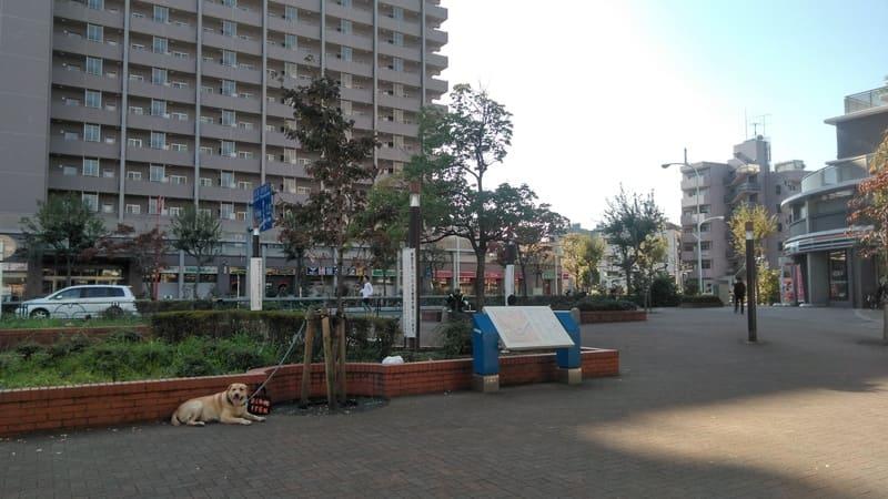 北赤羽駅 赤羽口前の広場