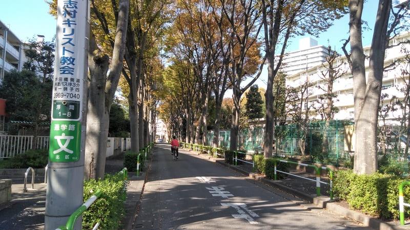 北赤羽駅北側 並木道