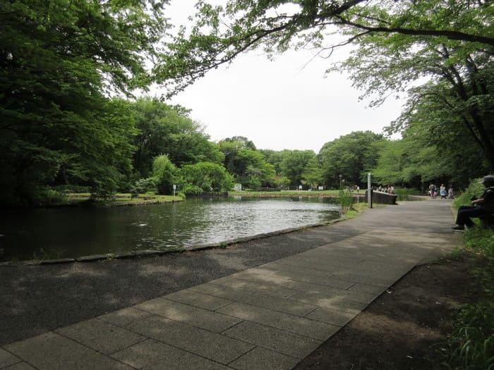駅周辺の公園