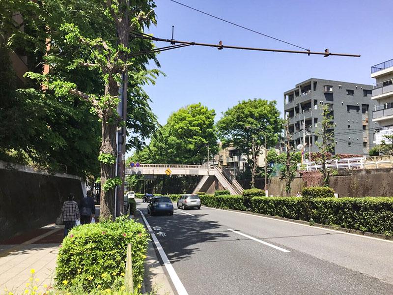 成増駅南口側の大通り